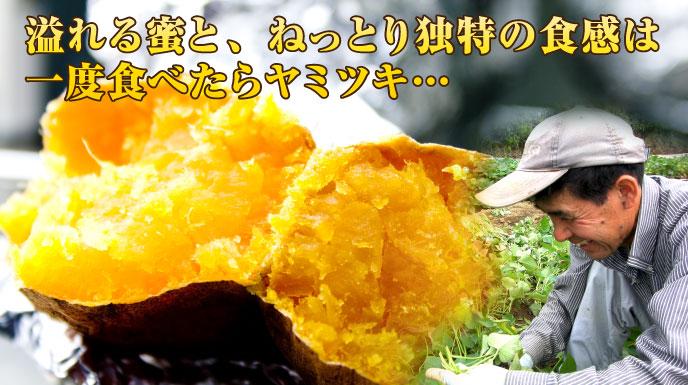 溢れる蜜と、ねっとり独特の食感は、一度食べたらヤミツキ・・・