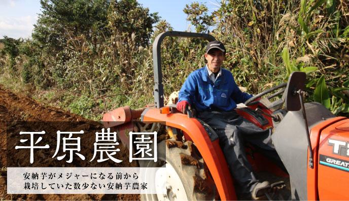 「平原農園」安納芋がメジャーになる前から栽培していた数少ない安納芋農家