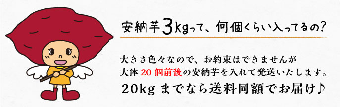 安納芋3kgって、何個くらい入るの?