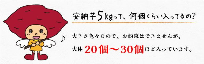 安納芋5kgって、何個くらい入るの?